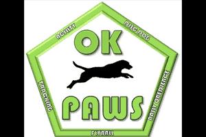 OKC Disc Dogs Team