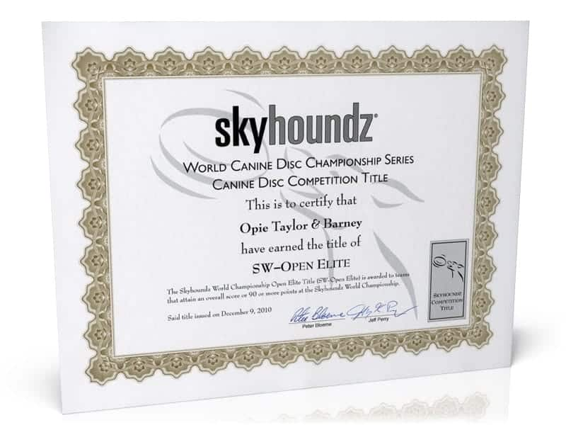 Skyhoundz Competition Title