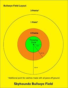 Bullseye Diagram Meters