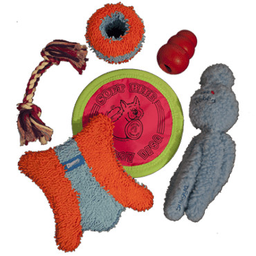 Assorted Toys-Indoor Toys