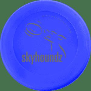 Blue Mini-Frisbee (Top View)