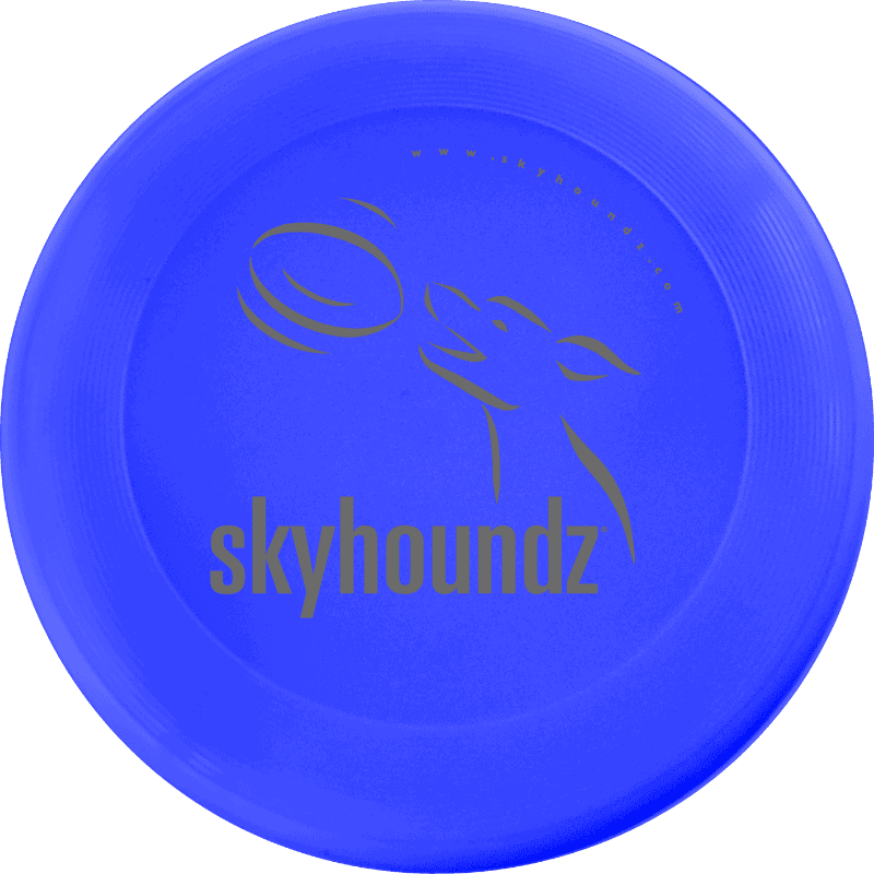 Blue Mini-Frisbee (Top View)