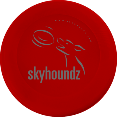Red Mini-Frisbee (Top View)
