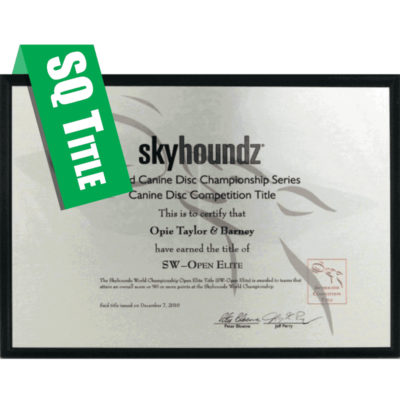 Skyhoundz Qualifier Title Plaque