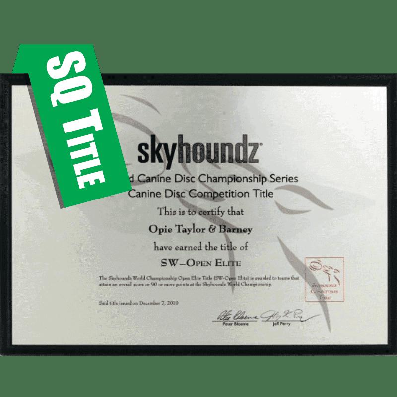 Skyhoundz Qualifier Title Plaque