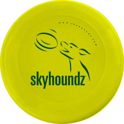 Yellow Mini-Frisbee (Top View)