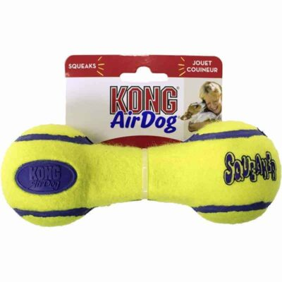 kong-air-dog-medium