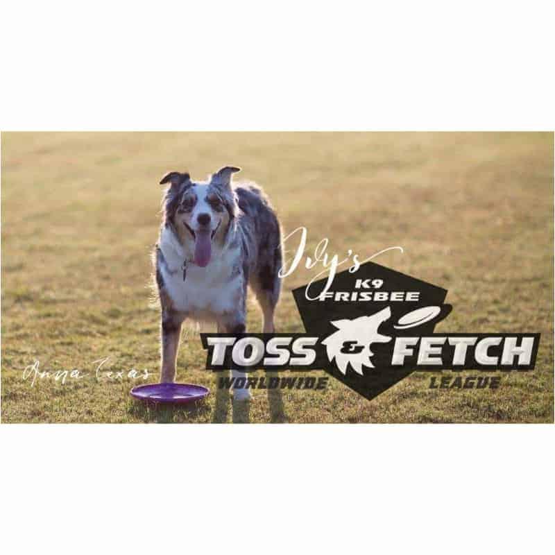 Ivy's K9 Toss & Fetch