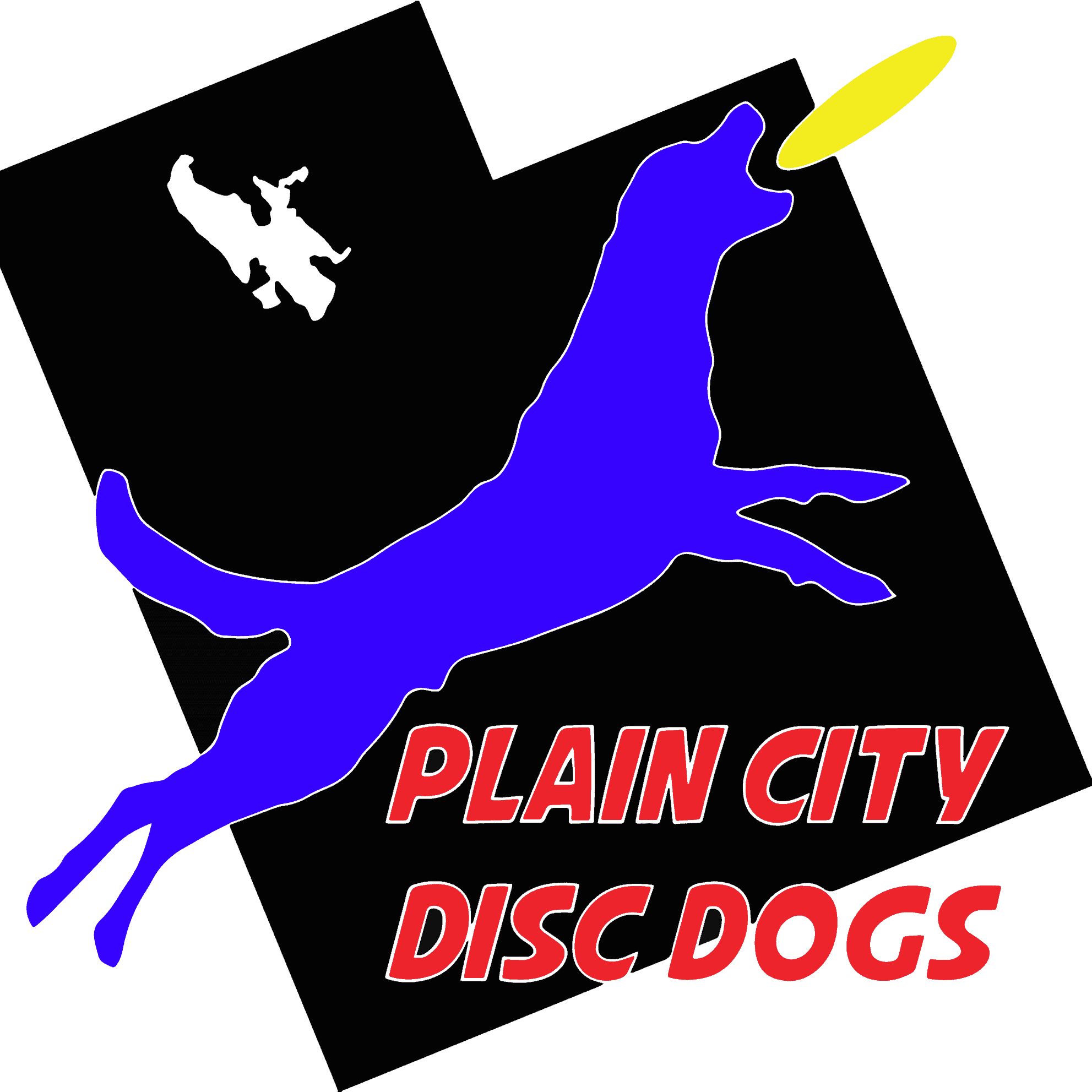 Plain City Disc Dogs