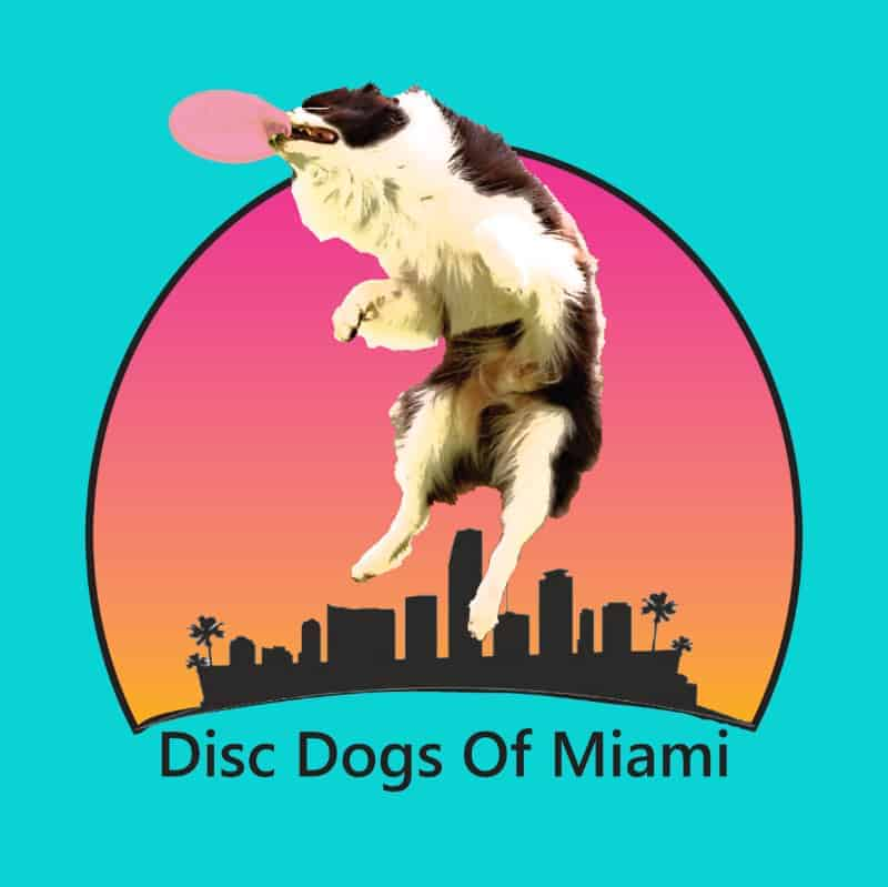 Disc Dogs of Miami